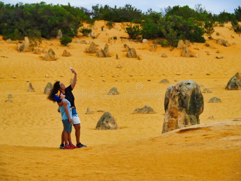 Les formations de roche de chaux de sommets, Australie occidentale image stock