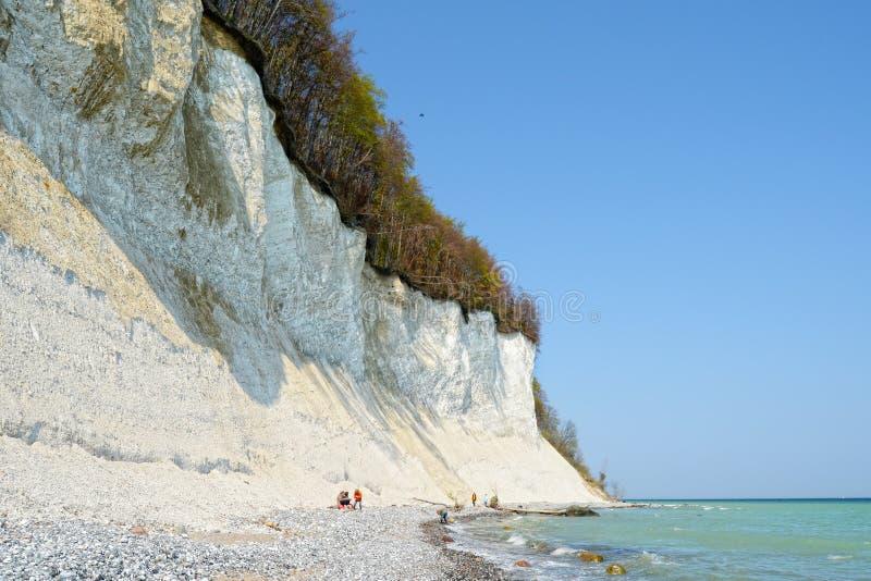 Les fossiles de recherche de personnes sur le rivage de la craie basculent le liff de l'île de Rugen image libre de droits