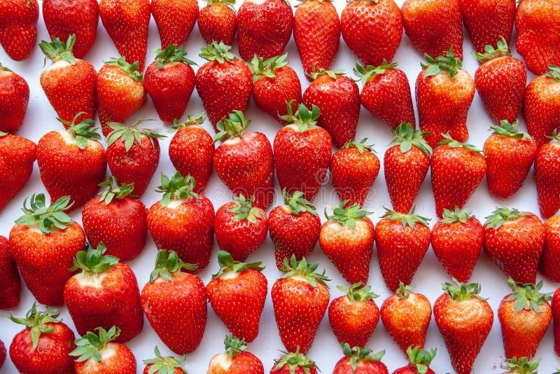 Les fraises fraîches sur un fond texturisé blanc ont aligné, répétant, et faisant un modèle image libre de droits