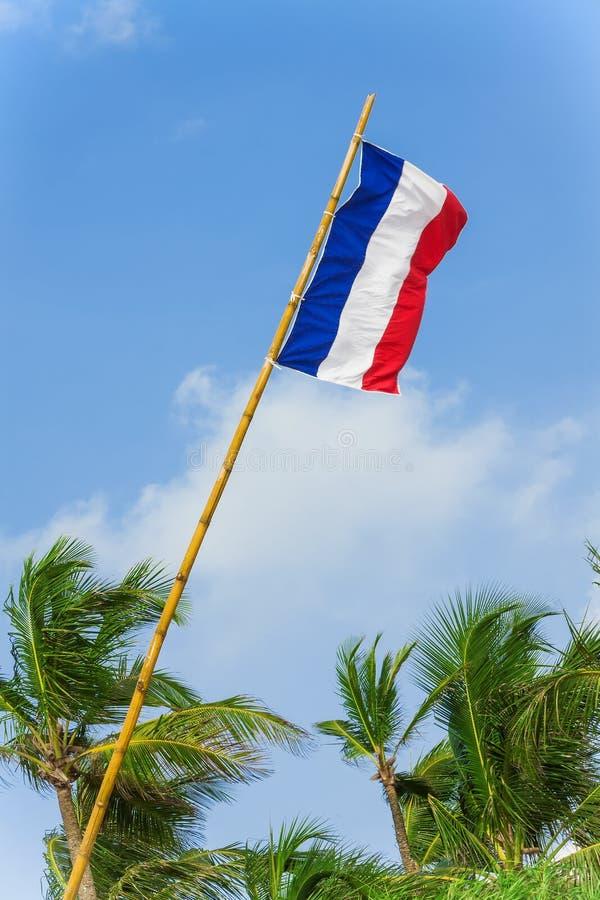 Les Frances marquent le soufflement dans le vent sur un fond de ciel bleu photos stock