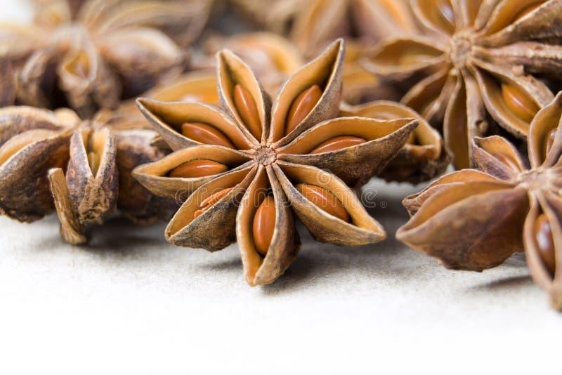 Les fruits et les graines chinois d'épice d'anis d'étoile pour la cuisson d'ingrédient fait à nourriture le parfum fin et l'huile photo stock