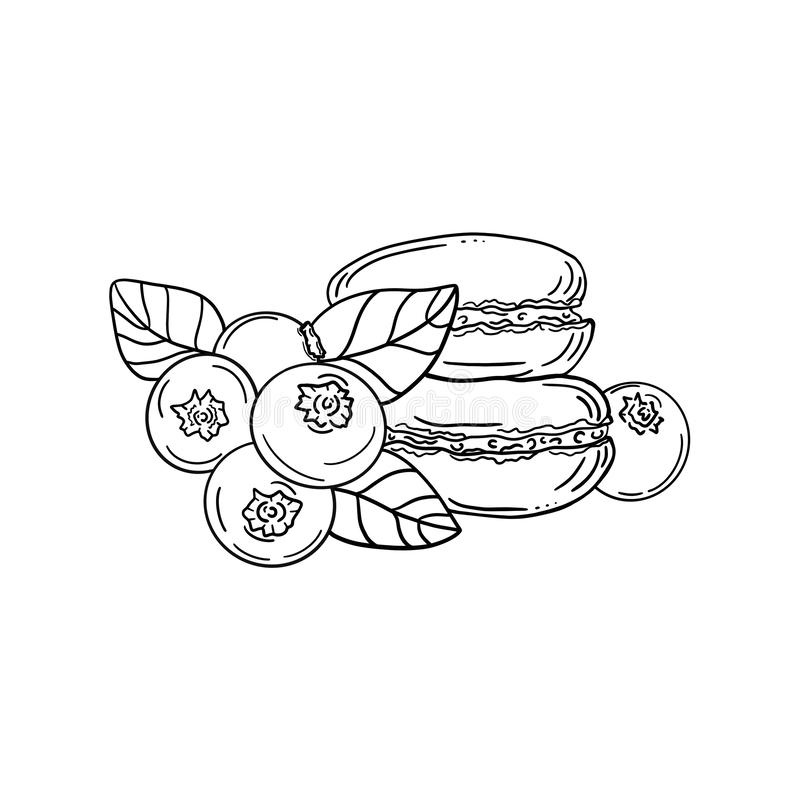 Les gâteaux de macaron ont isolé Illustration noire et blanche de deux macarons avec quatre myrtilles illustration de vecteur