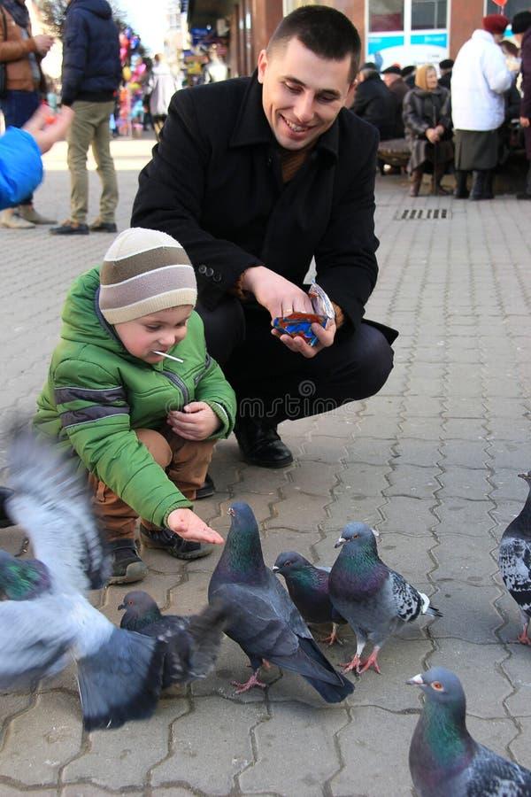 Les garçons avec la mère sur les pigeons carrés d'alimentation photos libres de droits