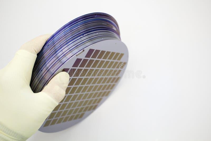 Les gaufrettes de silicium de diff?rentes couleurs dans la gamme sont dans la main enfil?e de gants photos stock