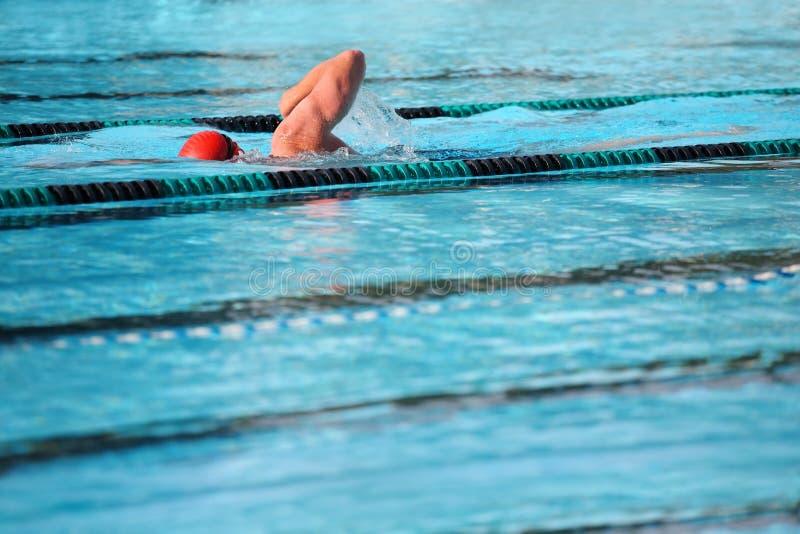 les genoux nageant photos stock