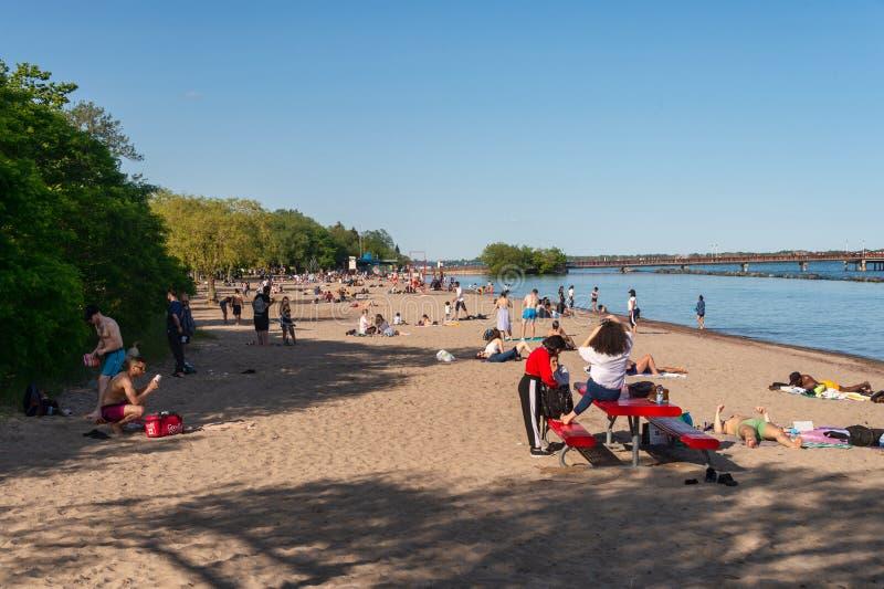 Les gens appréciant un jour d'été chaud à la plage sur l'île de centre à Toronto 2019 images libres de droits