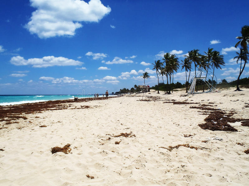 Les gens appréciant une plage tropicale photo libre de droits