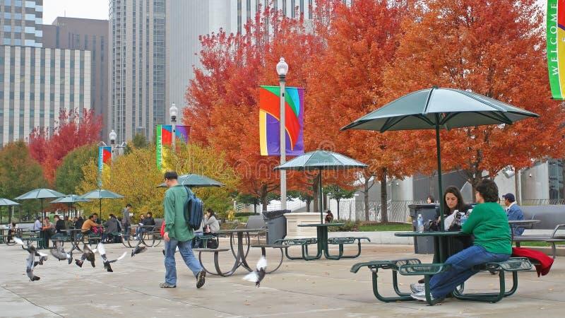 Les gens apprécient des feuilles d'arbre d'automne Chicago photographie stock libre de droits