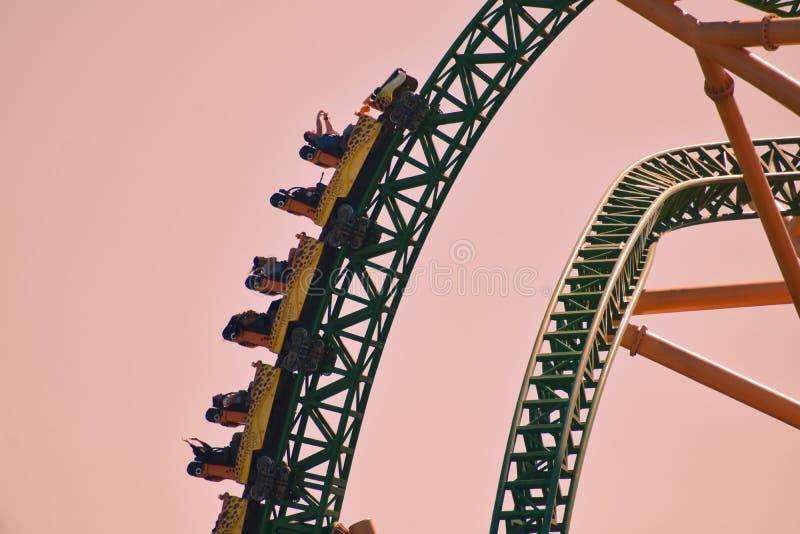 Les gens ayant le guépard Hunt Roller Coaster de thème d'amusement au parc à thème de Tampa Bay de jardins de Bush photo stock
