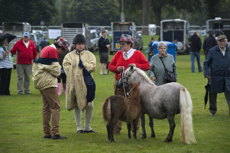 Les gens chez Pony Show images libres de droits