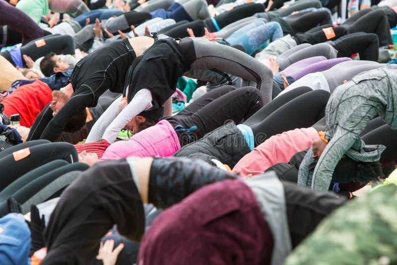 Les gens cintrent vers le haut la pose dans la grande classe extérieure de yoga image libre de droits