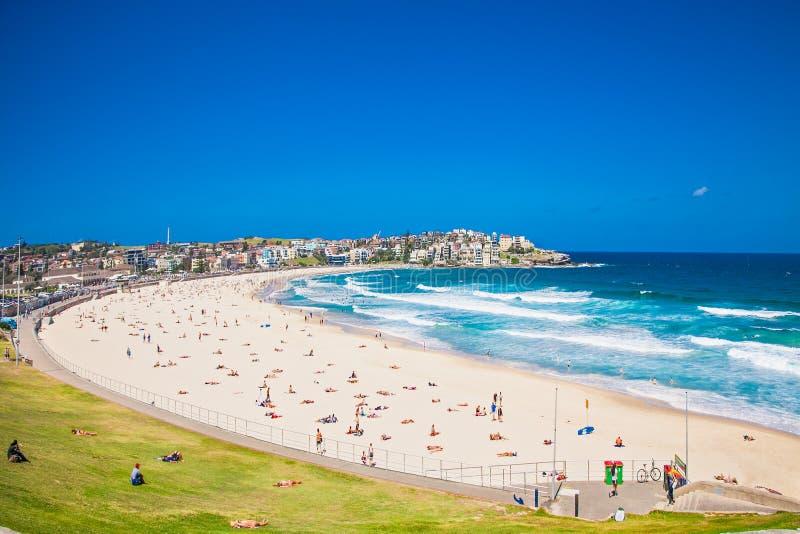 Les gens détendant sur le Bondi échouent à Sydney, Australie photographie stock