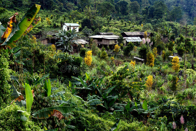 Les gens d'Arunachal Pradesh images stock
