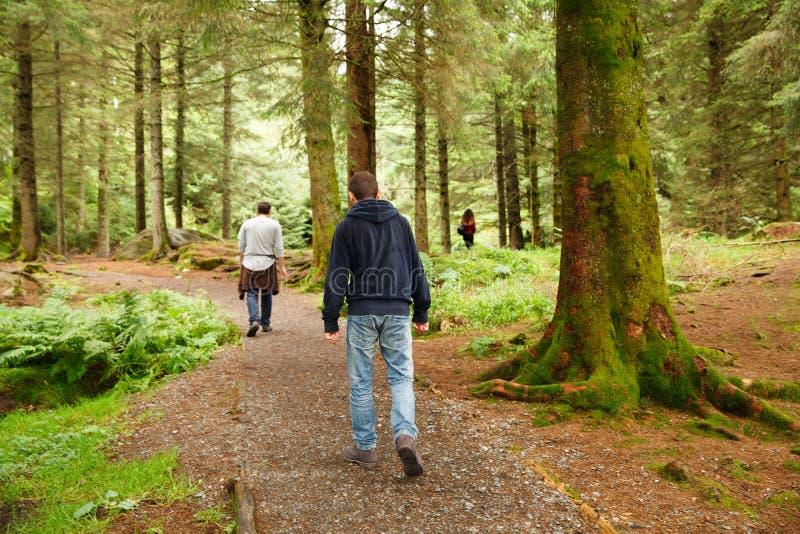 Les gens dans la forêt photo libre de droits
