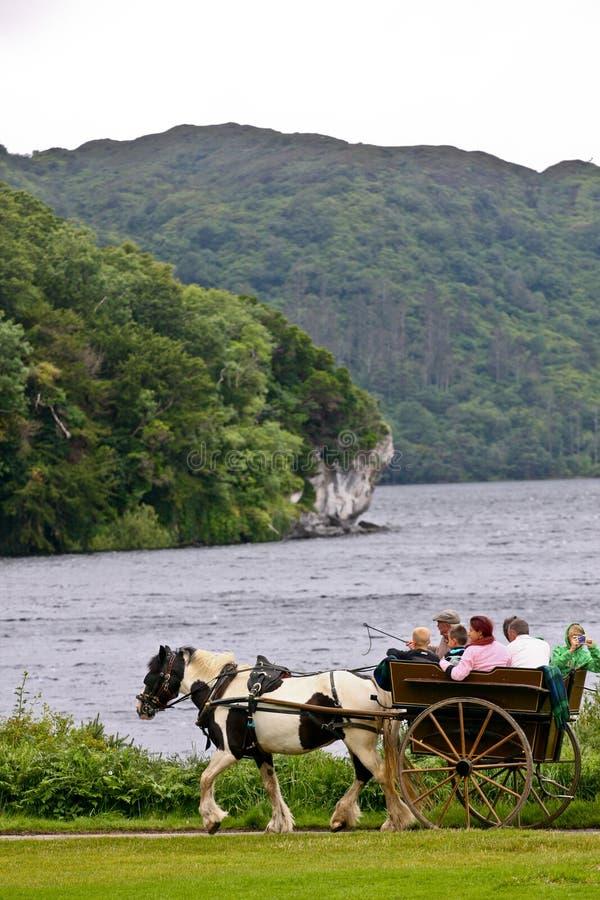 Les gens dans une calèche chez Muckross se garent, Killarney, Irlande image libre de droits