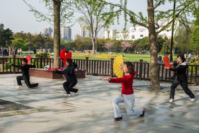 Les gens exerçant le chi de tai avec la porcelaine de Changhaï de parc de gucheng de fan image stock