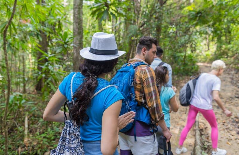 Les gens groupent avec le trekking de sacs à dos sur Forest Path Back Rear View, les jeunes hommes de course de mélange et la fem photos stock