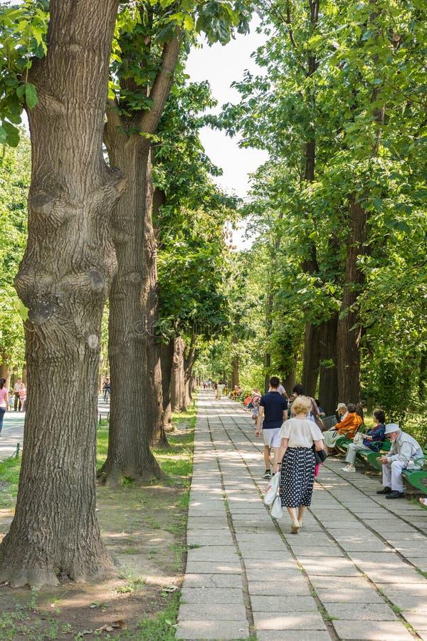 Les gens marchant en parc de Herastrau photographie stock