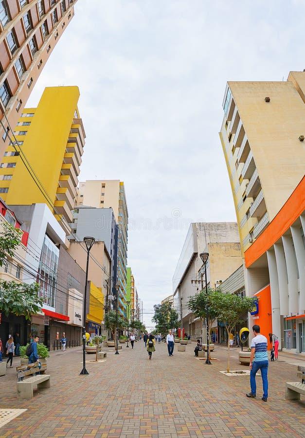 Les gens marchant entre les boutiques du centre dans Londrina photo stock