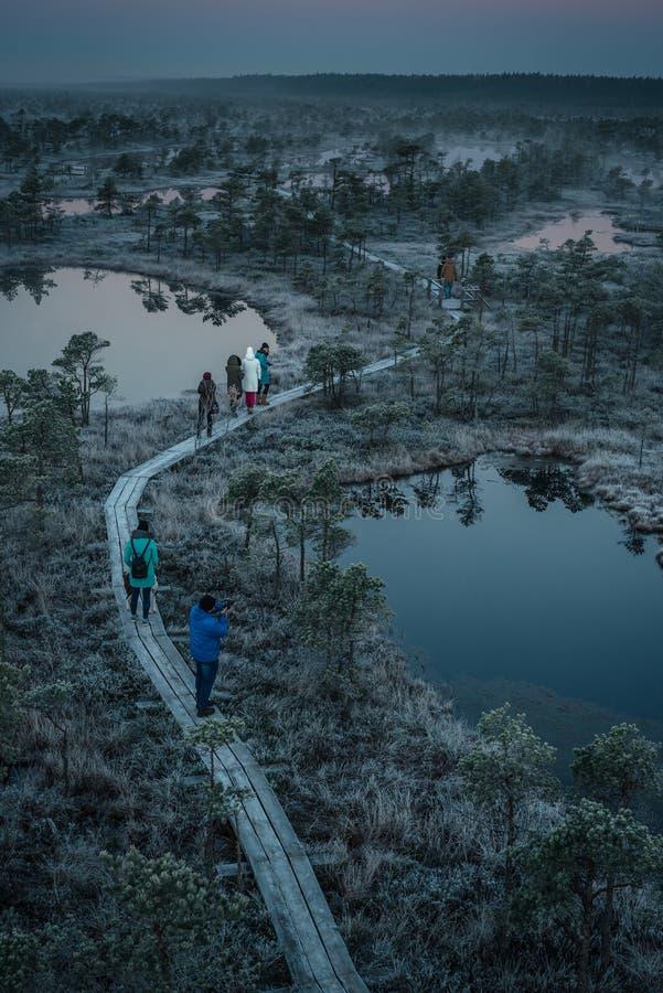 Les gens marchant sur le chemin en bois, route dans le marais le matin tôt d'hiver photos libres de droits