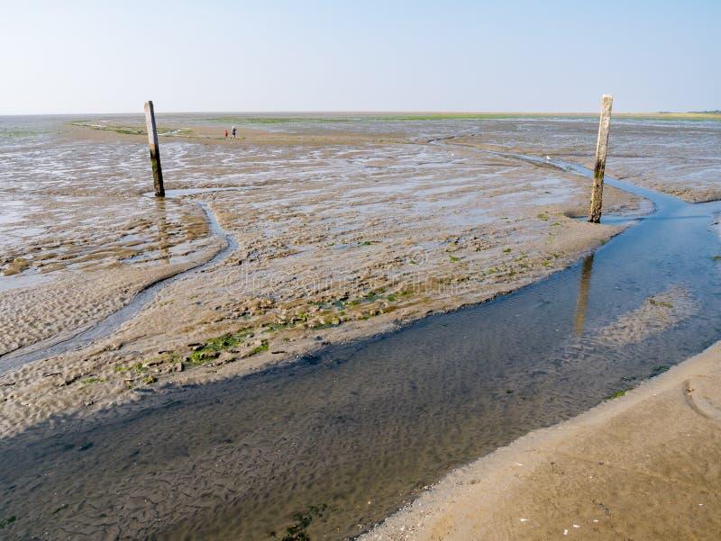 Les gens marchant sur le mudflat et le lit de marée identifié par les poteaux en bois à marée basse de Waddensea près de Schiermo photo stock