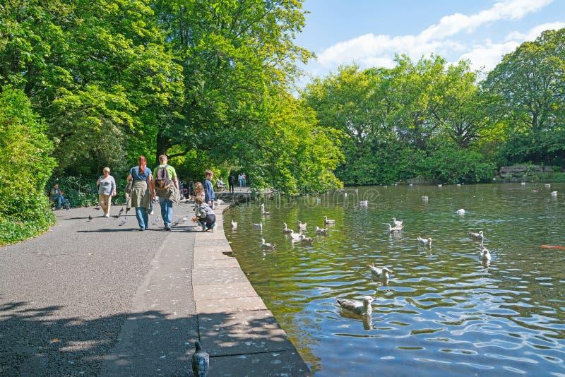 Les gens ont plaisir à marcher autour de l'étang tandis que les enfants alimentent des canards image libre de droits