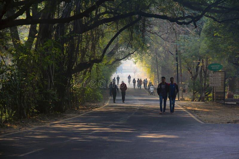 Les gens prenant un matin marchent à l'intérieur du campus universitaire de Pune, Pune images stock