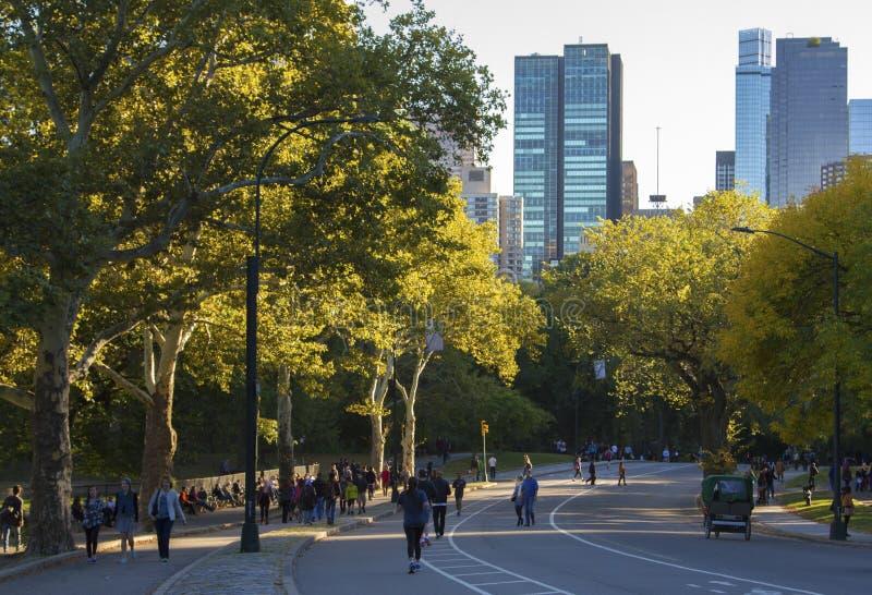 Les gens pulsant dans le Central Park image libre de droits