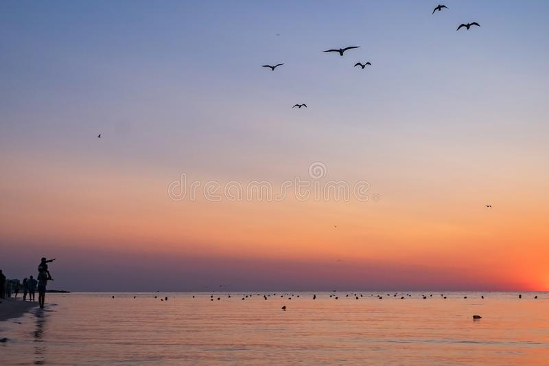 Les gens rencontrent le lever de soleil coloré sur la plage à la mer silhouettes des personnes et des mouettes le père tient un e photos libres de droits