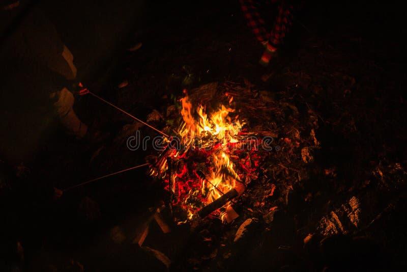 Les gens se tenant autour du feu de camp tenant des bâtons et réchauffant la nuit photographie stock libre de droits