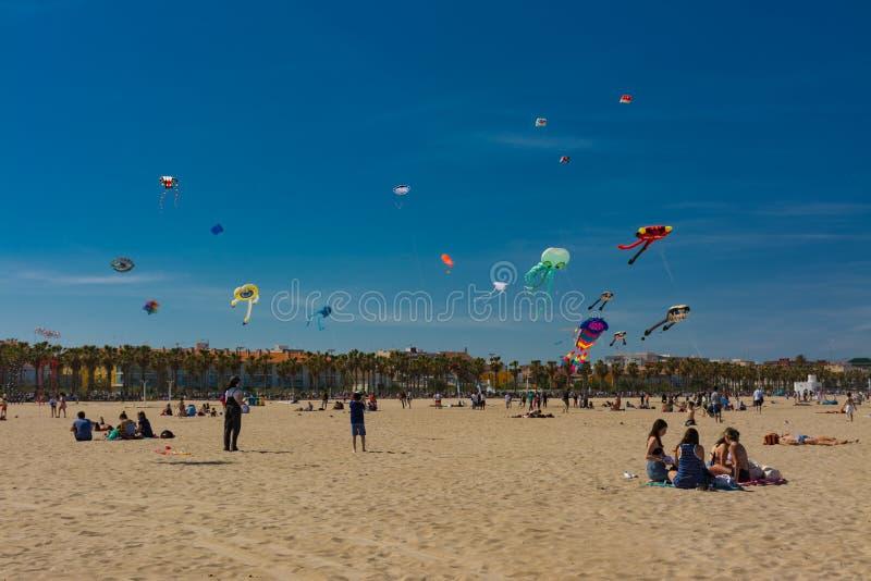 Les gens sur les cerfs-volants de plage et de vol photos libres de droits