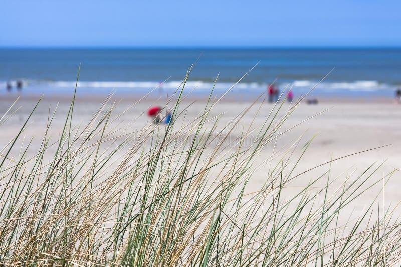 Les gens sur la plage dans Norderney photographie stock libre de droits
