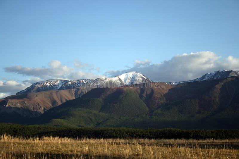 Les glaciers d'Altai images stock