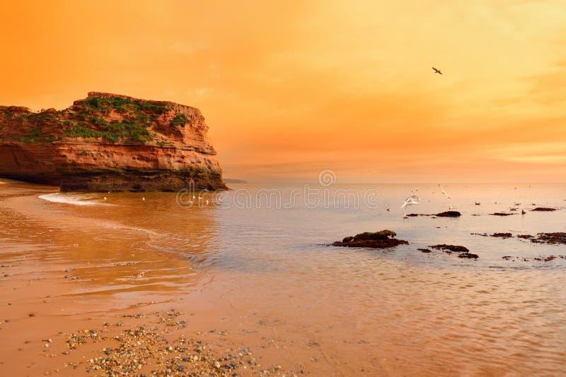 Les grès rouges impressionnants du Ladram aboient sur la côte jurassique, un site de patrimoine mondial sur la côte de la Manche  image stock