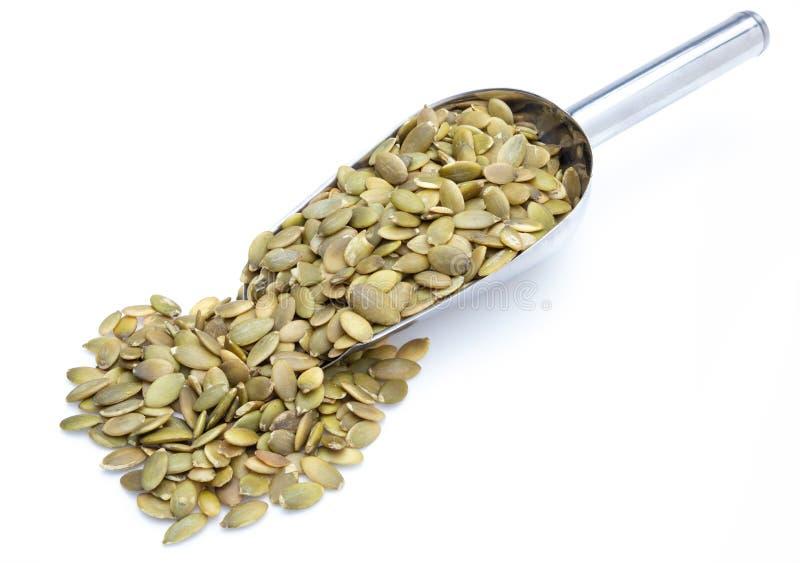 Les graines de citrouille ont épluché des graines dans la collection de pelle en métal de divers écrous photographie stock libre de droits