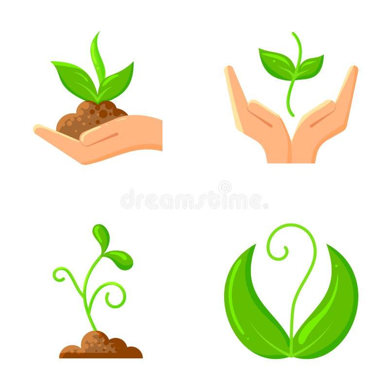 Les graines organiques plates de nature de pousse dirigent l'ensemble d'icônes illustration de vecteur
