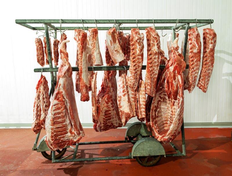 Les grandes échines de viande crue ont roulé des cintres photos stock