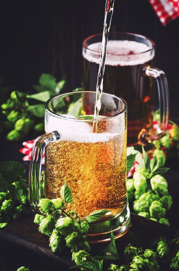 Les grandes tasses avec de la bi?re blonde allemande et les houblon frais, verse dans le verre, table fonc?e, foyer s?lectif photo stock