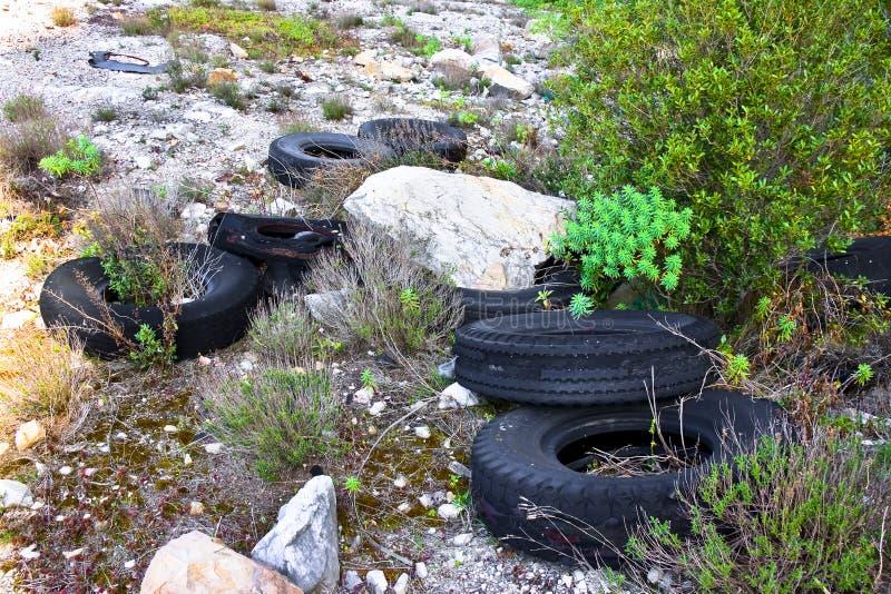 Les grands pneus ont abandonn? dans une d?charge ill?gale images libres de droits