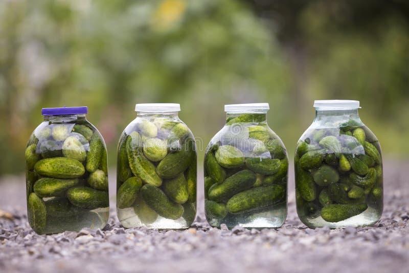 Les grands pots en verre avec les concombres frais verts de conserves au vinaigre salés en marinade sur le résumé ont brouillé le photo libre de droits