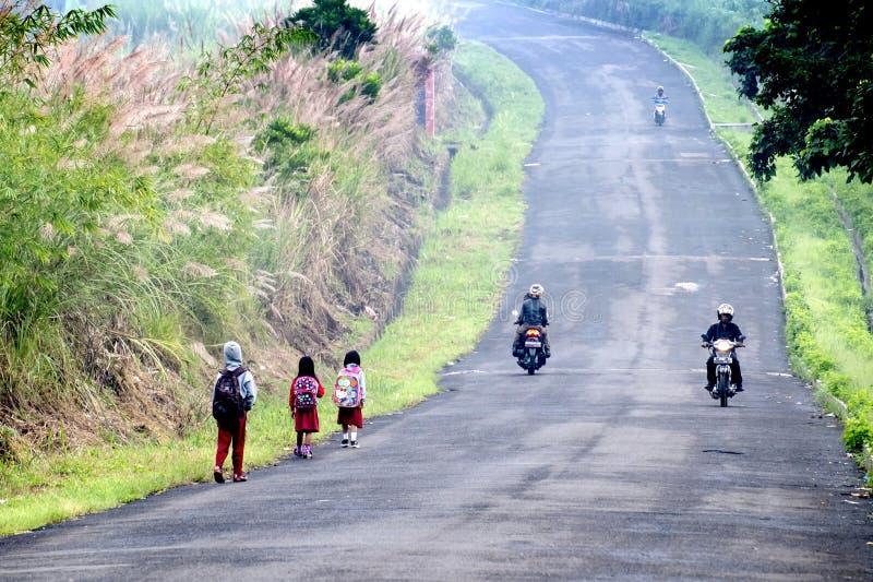Les groupes d'écoliers primaires ont marché à l'école dans le mornin photographie stock