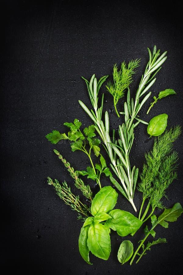 les herbes aromatiques fra ches avec de l 39 eau se laisse tomber sur un fond noir photo stock. Black Bedroom Furniture Sets. Home Design Ideas
