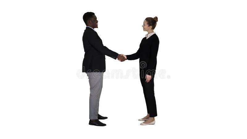 Les hommes d'affaires rencontrent et se serrent la main sur le fond blanc image libre de droits