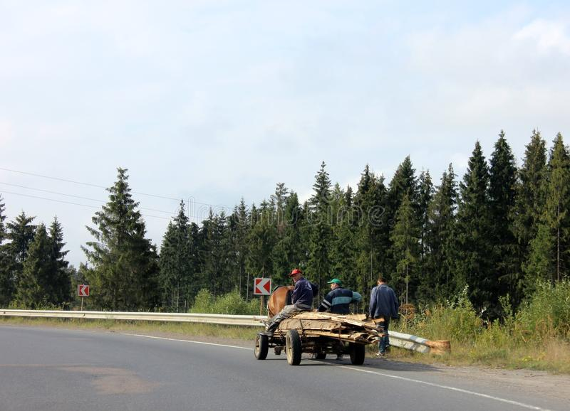 Les hommes de village de montagne conduisent un chariot avec les planches en bois image libre de droits