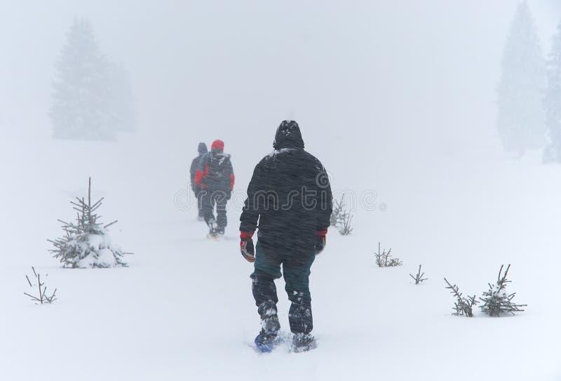 Les hommes passe par la tempête de neige sur des raquettes image stock
