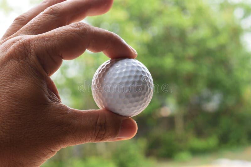Les hommes prennent des boules de golf de la terre images stock