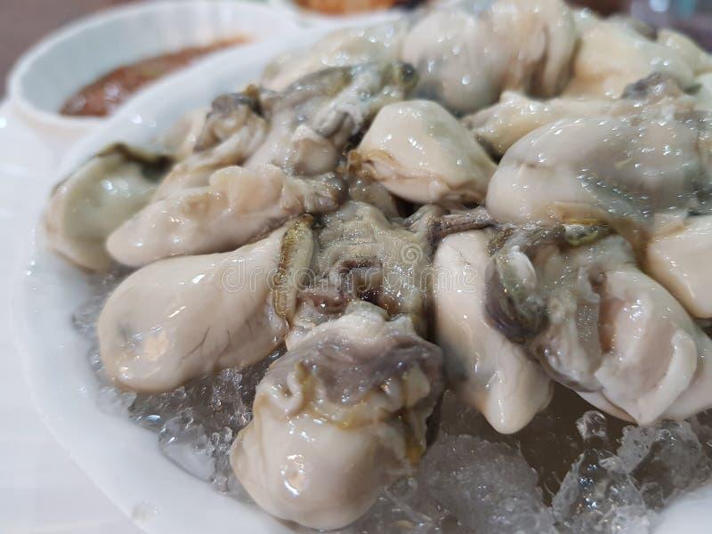 Les huîtres, prestations-maladie augmentent la fonction sexuelle, stimulent l'appareil reproducteur photographie stock libre de droits