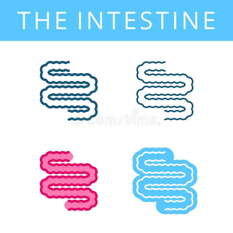 Les icônes d'internals Outli de vecteur d'intestin et d'appareil digestif illustration de vecteur