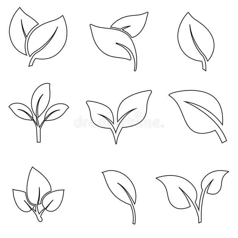 Les icônes de feuilles dirigent l'ensemble illustration d'icône de feuille symbole de collection de feuilles illustration stock