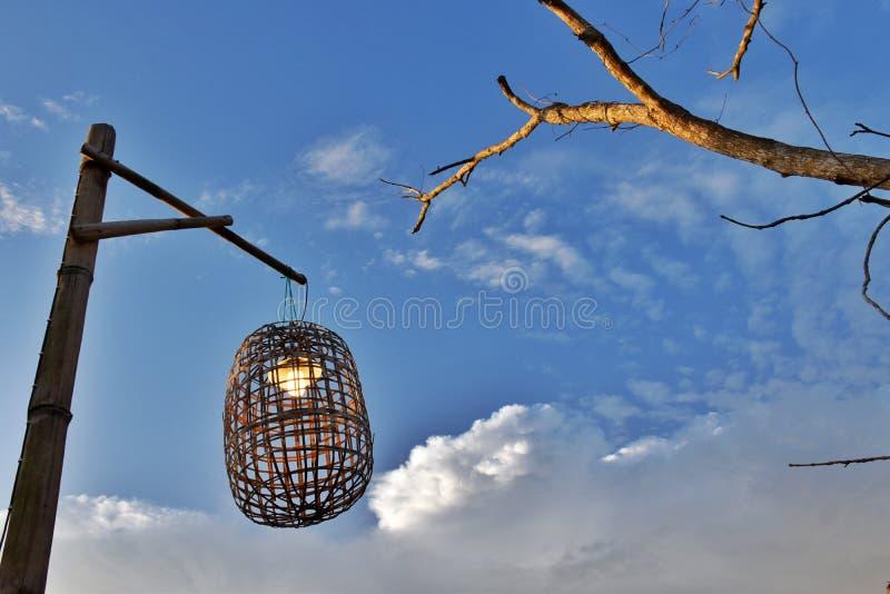 Les idées de décoration de lampe et d'arbres font des emplettes image libre de droits
